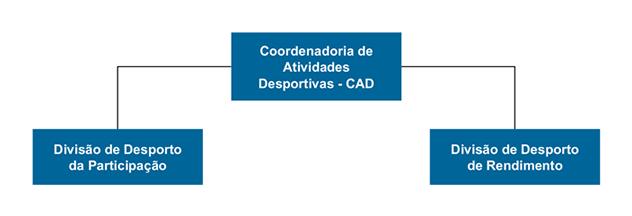 Imagem: Organograma da Coordenadoria de Atividades Desportivas.